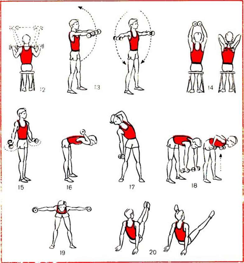 Лучшие упражнения с гантелями в домашних условиях  72