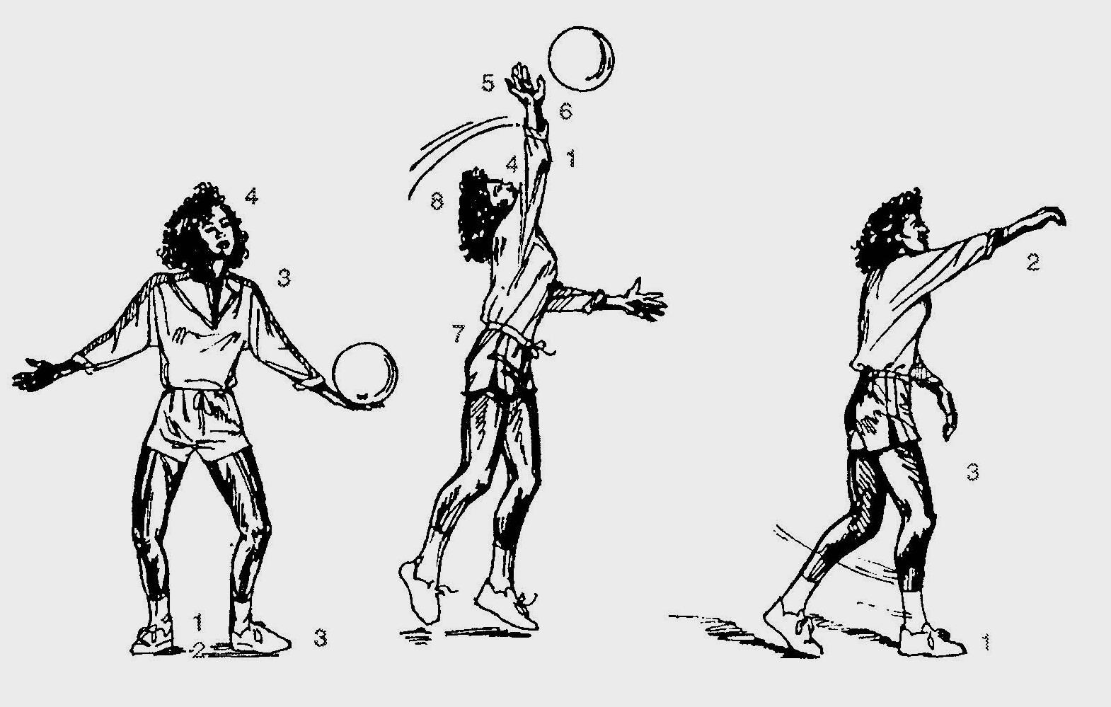 волейбол схема 4 2